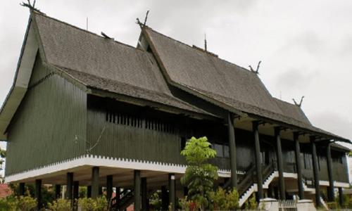 gambar rumah adat Kalimantan Tengah