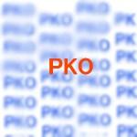 PKO協力法とはいったい何?カンボジア派遣された自衛隊の活動内容