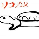 イシガメやクサガメがなつく方法と条件やり方