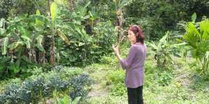 Anasha in our garden in Vilcabamba, Ecuador... organic greens all around