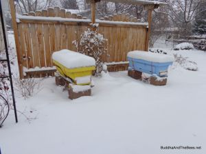 Bees all snug in their hives.
