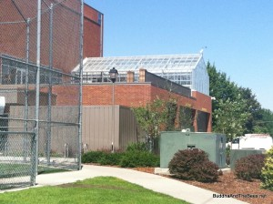 Beehives and greenhouse - Gonzaga University