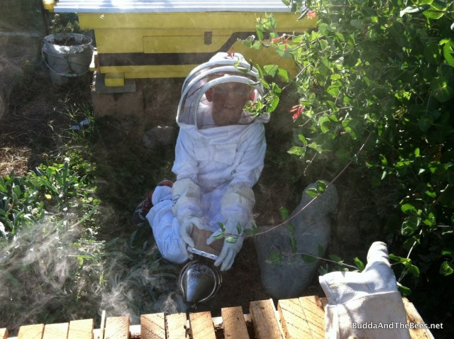 Duncan (and Buddha) tending the smoker while stealing some honey from BnB2