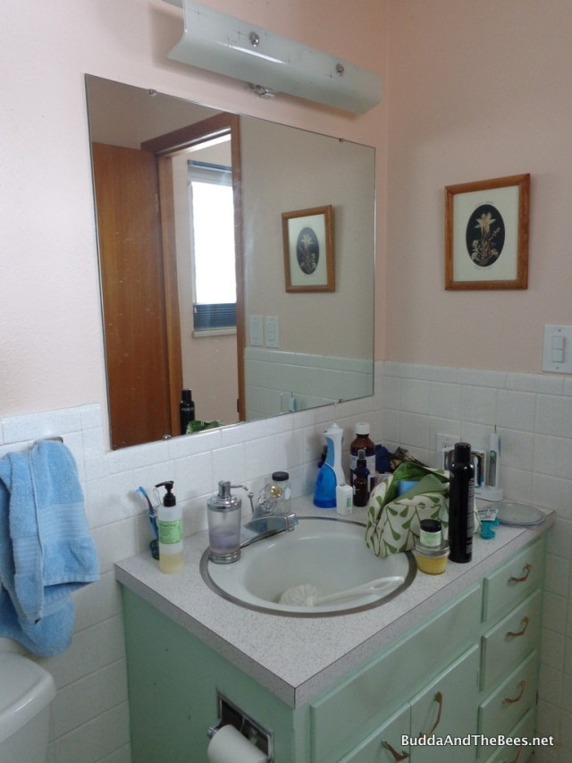 Master bath cabinet and sink - before remodel
