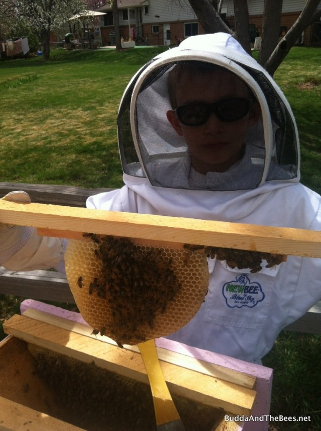 Duncan showing the new comb that the package bees made