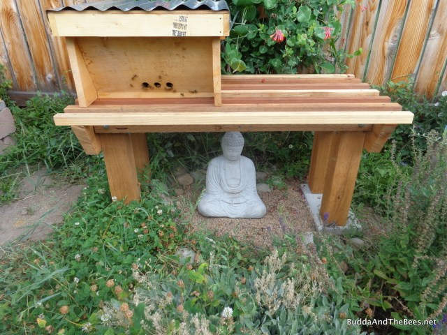 Buddha with his new roof