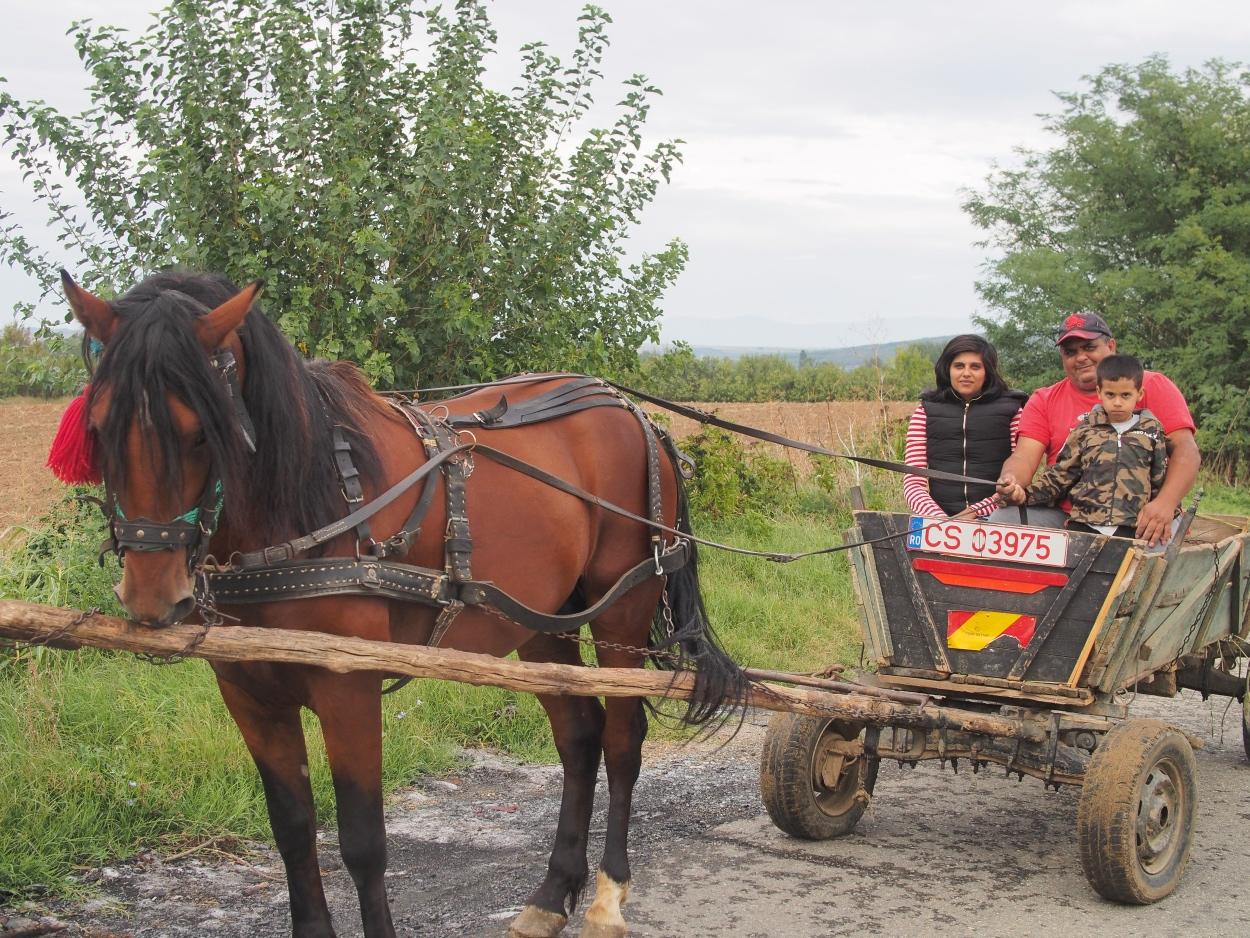 DAY 09… Malo Bavanište to Baziaș