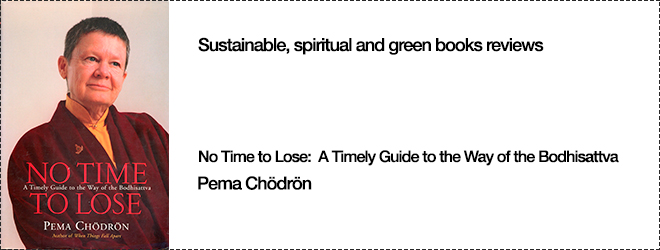 Sustainable And Spiritual Green Books Reviews No Time to Lose by Pema Chödrön