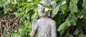 Learn Buddhist meditation in Leeds