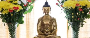 Meditation and Buddhist teaching day at retreat centre North Wales