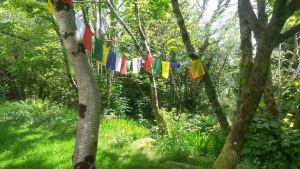 Buddhist spring celebration for the Leeds sangha