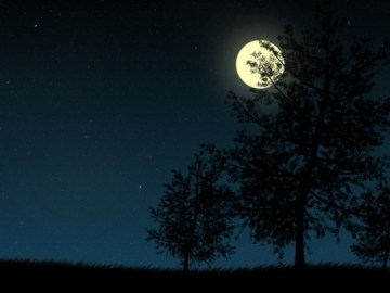 The Night the Moon didn't Rest