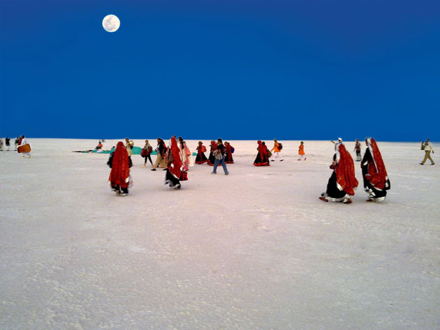 Beauty - 5 Reasons Why Rann of Kutch Should be your Next Holiday Destination
