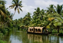 10 Things To Do in Kerala