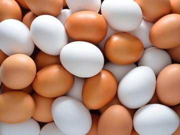 10 Awesome Facts about Eggs