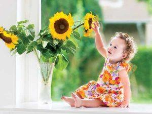 16-1455619207-sunflowersdaisies