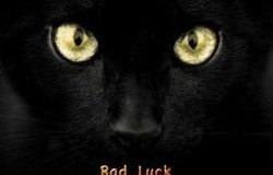 black cat bad luck