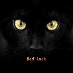 black cat bad luck