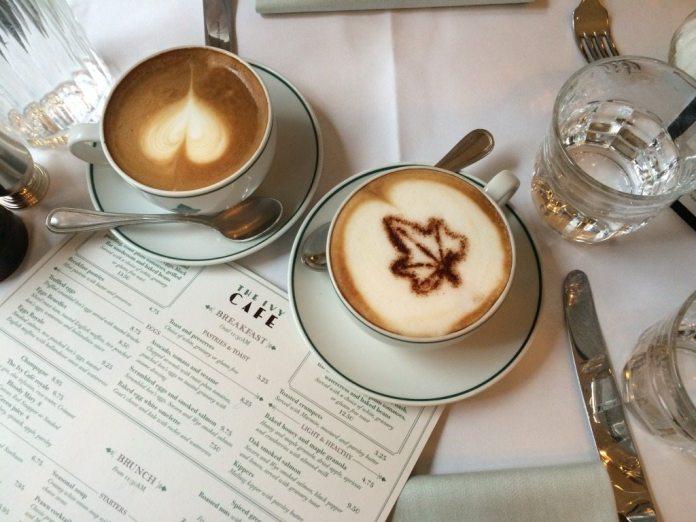 CAFE IVY