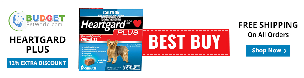 Heartgard Plus is popular monthly treatment to control heartworm infection and provide total protection against heartworm disease to dogs. The tasty flavored chew is effective in eliminating hookworm and roundworm from dog's system.