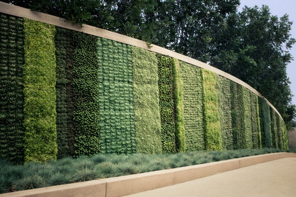 Choosing Where to Locate Your Feature Walls   BudgetReno on Green Wall Patio id=19634