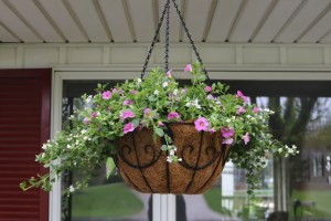 spring sprucing with flower baskets
