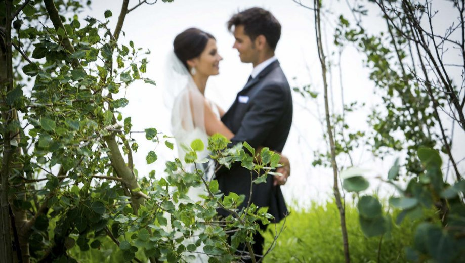 Calgary Wedding Photographer – How To Choose The Perfect One