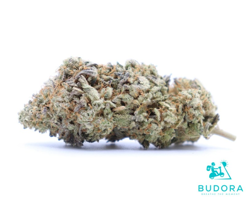 Jet Fuel Buy Weed Online Vancouver BC Canada