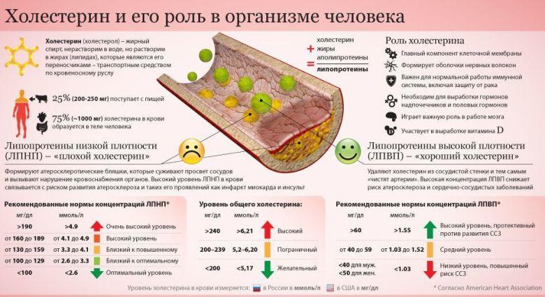 //budtezzdorovy.ru/холестерин
