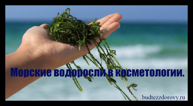 http://budtezzdorovy.ru/водорослей