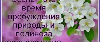 https://budtezzdorovy.ru защиты от поллиноза