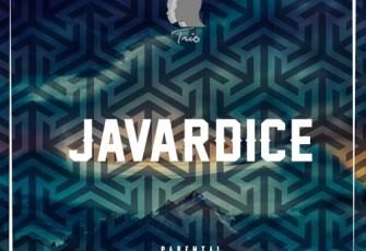 Trio Music - Javardice (Original Mix) 2016