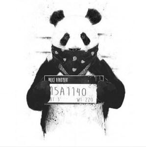 Panda (Eduardo Bangzz X Aldo F X Villa-Boy-C X 3va$ Énimos) 2016