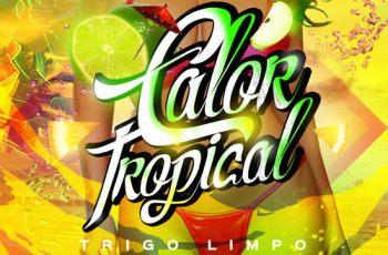 Trigo Limpo & Dj Nelasta - Calor Tropical (feat. Rhayra) 2017