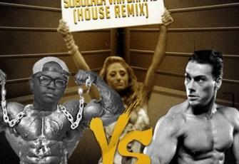 DJ Twitty - Sobulala uVan Damme (House Remix) 2017