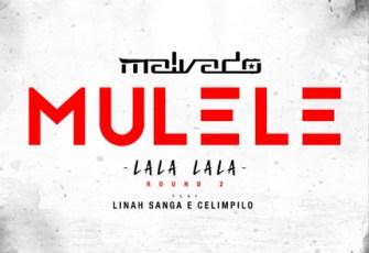 Dj Malvado feat. Linah Sanga e Xelimpilo - Mulele (Lala Lala) Round 2 (Afro House) 2017
