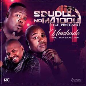 Sdudla Noma1000 feat. Professor - Umshado (Afro House) 2017