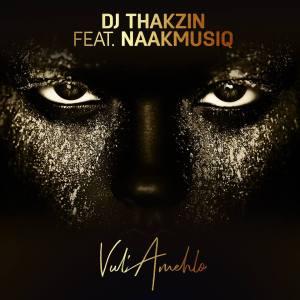 DJ Thakzin feat. NaakMusiQ - Vul'Amehlo (Afro House) 2018