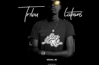 Dj Léo Mix - Tribulations (Original Mix)