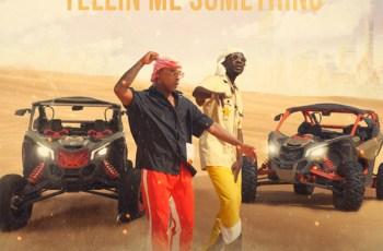 Nelson Freitas - Tellin Me Something (feat. Mr Eazi)