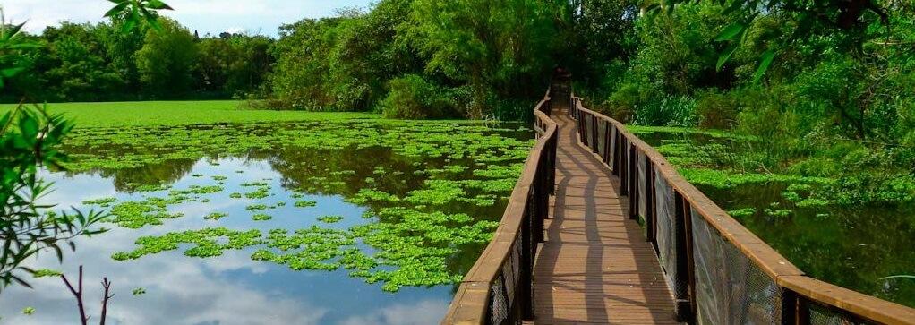 Vicente Lopez reserve