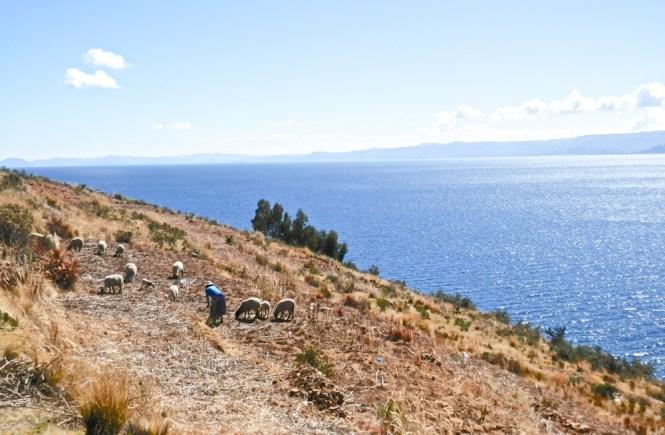 Lac Titicaca isla de la luna