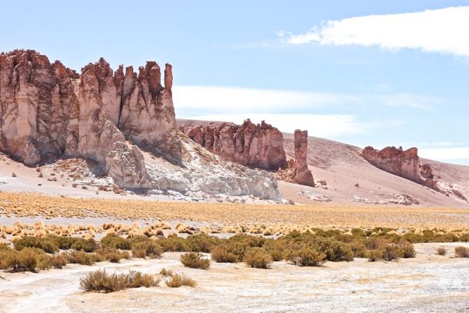 Salar de tara San Pedro de Atacama