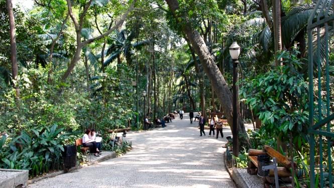 Parque Trianon Que voir Sao paulo au brésil