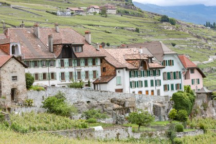 Visite des vignes week end Suisse Romande