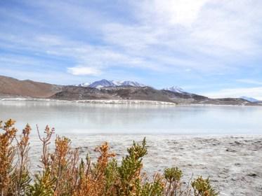 Laguna visiter le Salar d'Uyuni en bolivie
