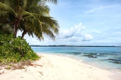 Guyam Island ou l'île de Robinson - Island Hopping Siargao