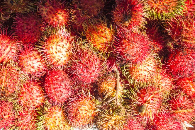 Fruits aux philippines Ramboutan