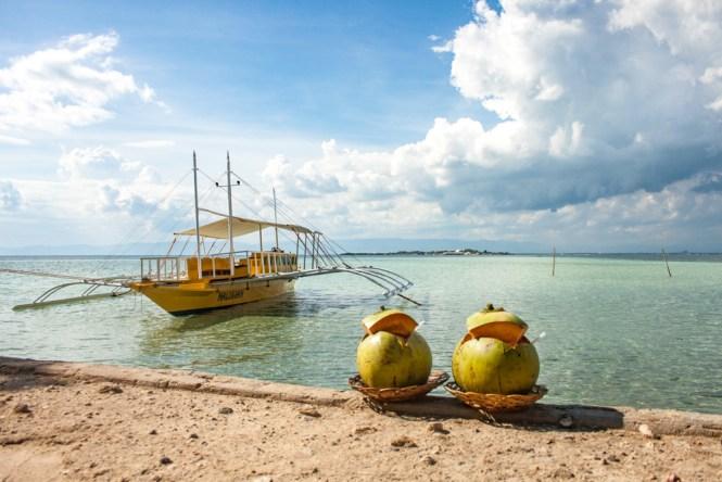 Cebu aux philippinesNalusuan Cocos