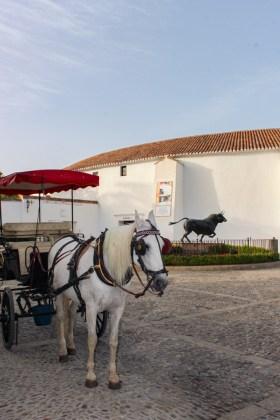 arène visiter Ronda en andalousie